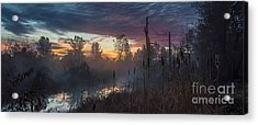 Bulrush Sunrise Full Scene Acrylic Print