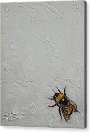Bumblebee Acrylic Print by Michael Creese