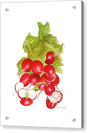 Bunch Of Radishes Acrylic Print by Nan Wright
