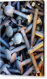Bunch Of Screws Acrylic Print by Carlos Caetano