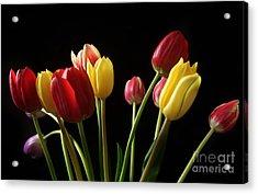 Bunch Of Tulips Acrylic Print