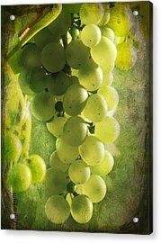 Bunch Of Yellow Grapes Acrylic Print by Barbara Orenya