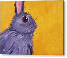 Bunny Acrylic Print by Nancy Merkle