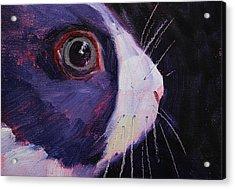 Bunny Thoughts Acrylic Print