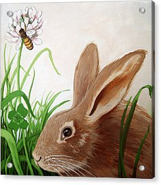 Bunny View Acrylic Print by Linda Apple