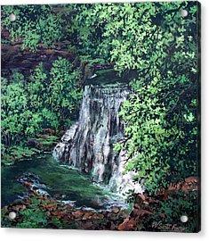 Burgess Falls State Park Tn. Acrylic Print by W  Scott Fenton