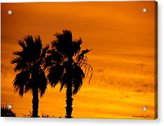 Acrylic Print featuring the photograph Burning Palms by Kathy Ponce