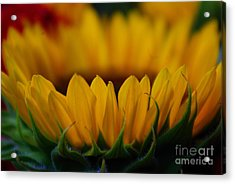 Acrylic Print featuring the photograph Burning Ring Of Fire by John S