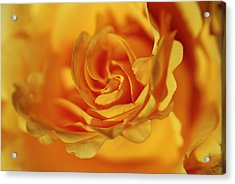 Burning Yellow Acrylic Print