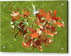 Burnt Orange Of Fall Acrylic Print
