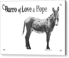 Acrylic Print featuring the drawing Burro Of Love And Hope by Marianne NANA Betts