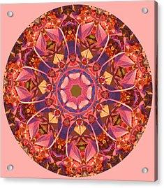 Burst Of Fall Mandala Acrylic Print