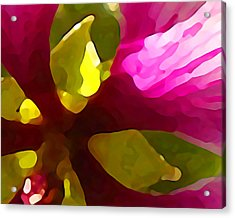 Burst Of Spring Acrylic Print by Amy Vangsgard
