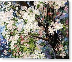 Burst Of Spring Acrylic Print by Barbara Jewell