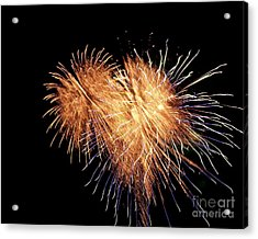 Acrylic Print featuring the photograph Bursting With Love by Eve Spring