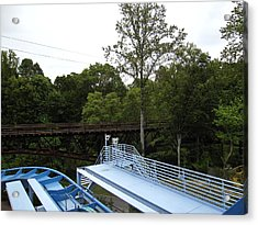 Acrylic Print featuring the photograph Busch Gardens - 121211 by DC Photographer