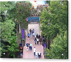 Acrylic Print featuring the photograph Busch Gardens - 12124 by DC Photographer