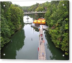 Acrylic Print featuring the photograph Busch Gardens - 12126 by DC Photographer