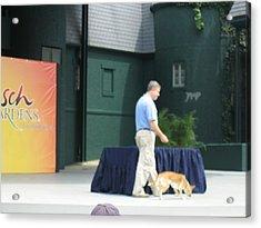 Busch Gardens - Animal Show - 121223 Acrylic Print
