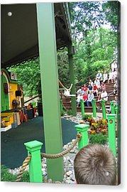 Busch Gardens - Animal Show - 121235 Acrylic Print by DC Photographer