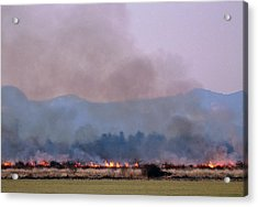 Bush Fire In British Columbia Acrylic Print by David Nunuk/science Photo Library