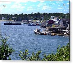 Bush Island Nova Scotia Acrylic Print by George Cousins