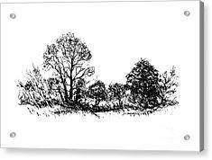 Bushes Acrylic Print