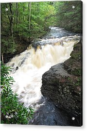 Bushkill Rapids Acrylic Print by Richard Reeve