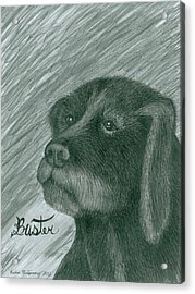 Buster Acrylic Print