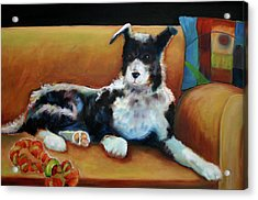 Buster The Border Collie Acrylic Print