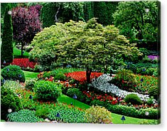 Butchart Gardens Acrylic Print by Lisa Phillips