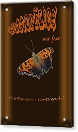 Butterflies Are Free Acrylic Print by Larry Bishop