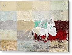 Butterfly And Daisy - 140109109w1t2a Acrylic Print by Variance Collections