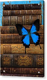 Butterfly And Old Books Acrylic Print by Garry Gay