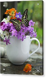 Butterfly And Wildflowers Acrylic Print by Edward Fielding