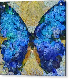 Butterfly Art - D11bb Acrylic Print by Variance Collections