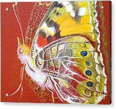Butterfly Basic Acrylic Print
