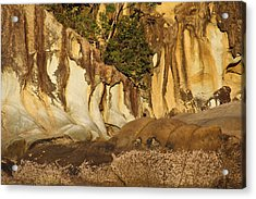 Butterfly Bay Rock Formations Acrylic Print