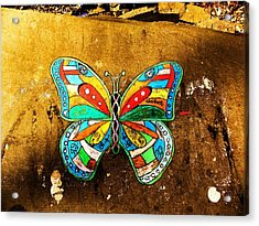 Butterfly Acrylic Print by Christian Rooney