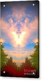 Acrylic Print featuring the photograph Butterfly Cloud by Karen Newell