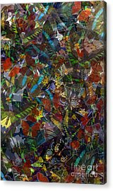 Acrylic Print featuring the photograph Butterfly Collage by Robert Meanor
