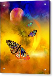 Butterfly Expansion Acrylic Print by Bruce Manaka