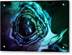 Butterfly Eye Acrylic Print by Gun Legler