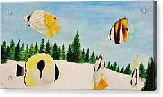 Butterfly Fish Acrylic Print by Savanna Paine