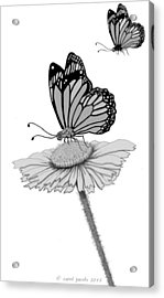 Acrylic Print featuring the digital art Butterfly Friends by Carol Jacobs