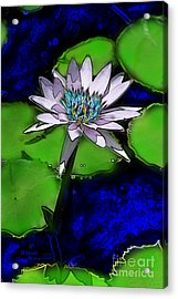 Acrylic Print featuring the digital art Butterfly Garden 10 - Water Lily by E B Schmidt