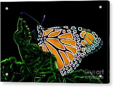 Acrylic Print featuring the digital art Butterfly Garden 12 - Monarch by E B Schmidt