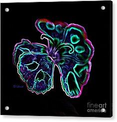 Acrylic Print featuring the digital art Butterfly Garden 18 - Carnation by E B Schmidt