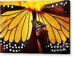 Butterfly Hitching A Ride 2 Acrylic Print by Nancy E Stein