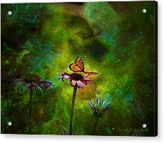 Butterfly In An Ethereal World Acrylic Print by J Larry Walker
